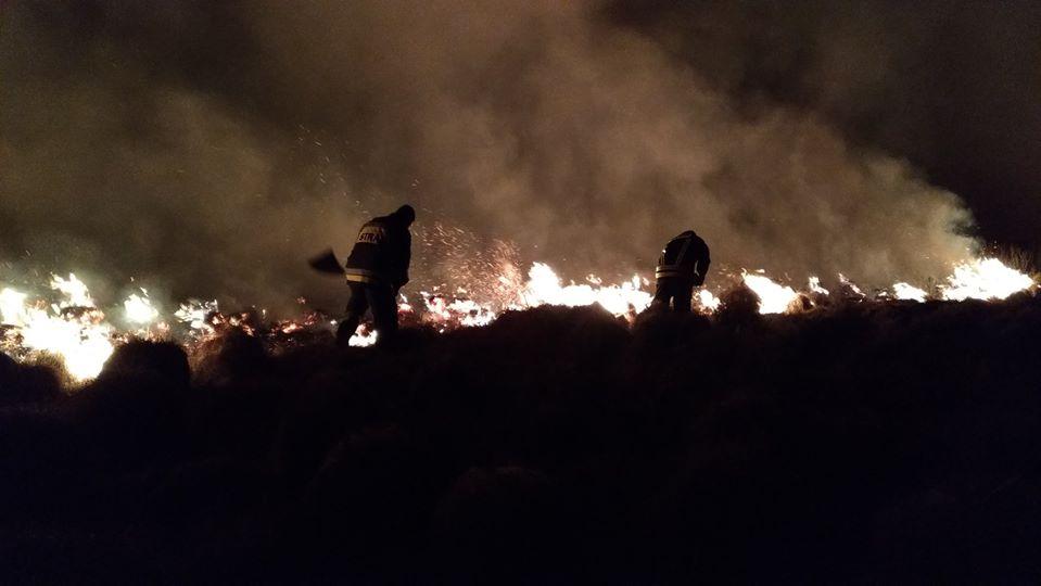 Dzień Ziemi: Nadal płonie największy polski park narodowy. Jak pomóc?