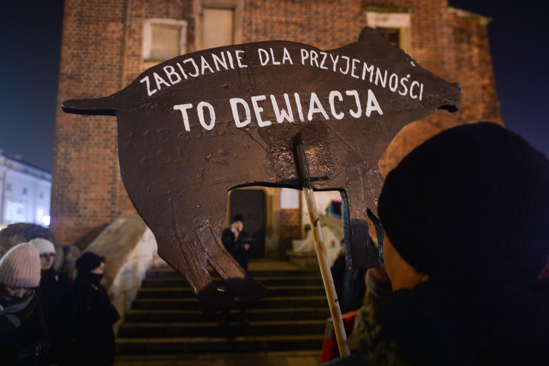 Wtym roku odstrzelono wPolsce 30 tys. dzików. Torzekoma walka zchorobą