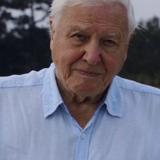 Sir David Attenborough wrekordowym czasie zdobył milion obserwujących naInsta